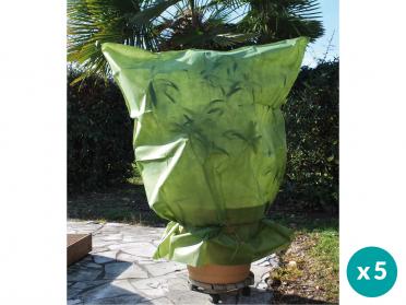 Protégez vos plantes et arbustes du froid