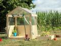 Structure bois + bâche transparente
