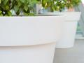 Pot géant en plastique pour arbres et arbustes