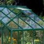 Serre verre trempé Lams DIANA 8,25 m² avec base - Verte