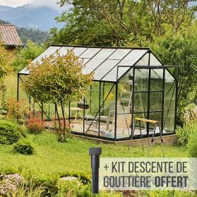 Serre en verre trempé Lams LAURUS 11,30 m² avec base - Verte