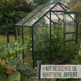 Serre de jardin en verre trempé ALLIUM 2,50 m² - Aluminium laqué vert