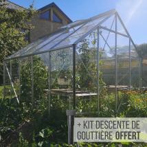 Serre de jardin en verre idéal pour légumes potager et tomates