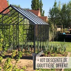 Serre de jardin en verre 7,4 m² - Allium 7500 Lams