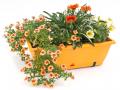 Support universel pour jardinière