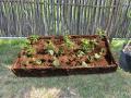 Pour délimiter un emplacement au jardin