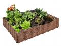 Favorise la croissance des plantes