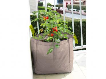 Plantez sur votre balcon