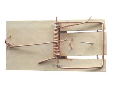 2 tapettes à souris en bois