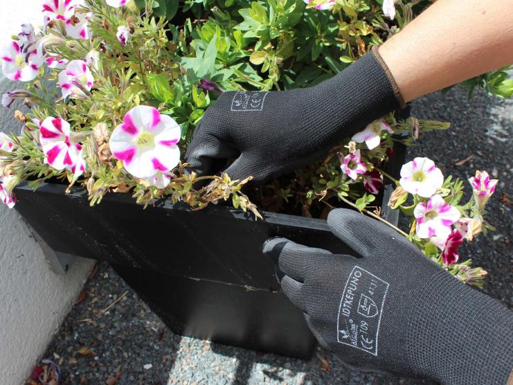 Gant de jardinage Expert