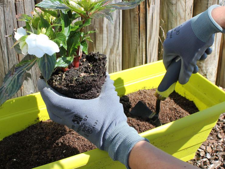 Gant de jardinage Pratique