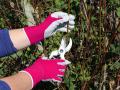 Gant de jardinage Petits Travaux