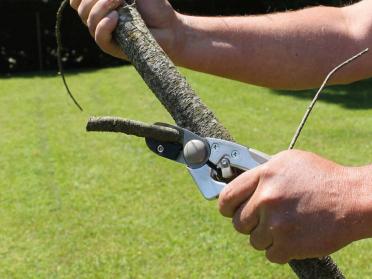 Sécateur crémaillère 21,5 cm