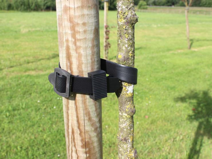 Pour le tuteurage des arbres
