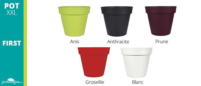 Choix couleurs pot first XXL